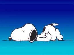 snoopy dorme.jpeg